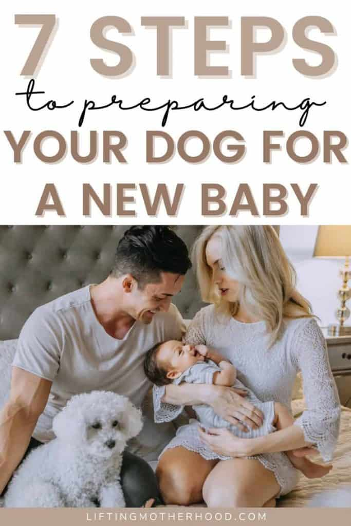 prepare your dog for a baby pin