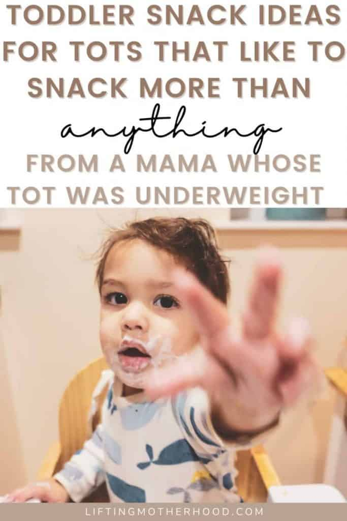 toddler snack ideas for picky toddlers